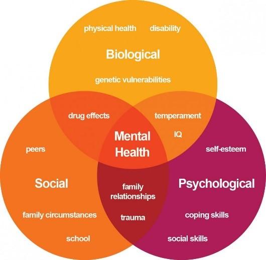 mental illness causes